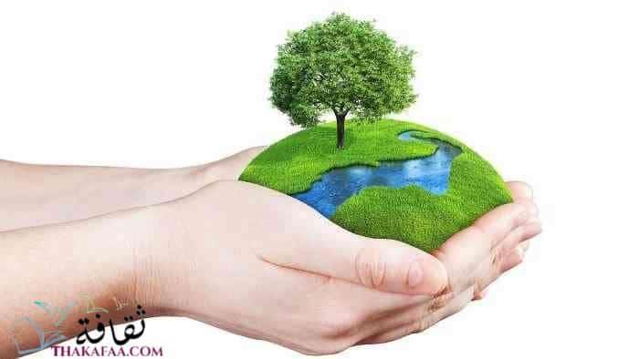 بحث عن البيئة -نصائح للحفاظ علي البيئة- موقع ثقافة.كوم