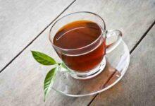 صورة طريقة تحضير شاي بوشينها والفوائد والآثار الجانبية