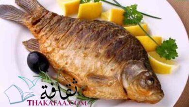 صورة ادق تفسير رؤية السمك المشوي في المنام : جميع التفسيرات