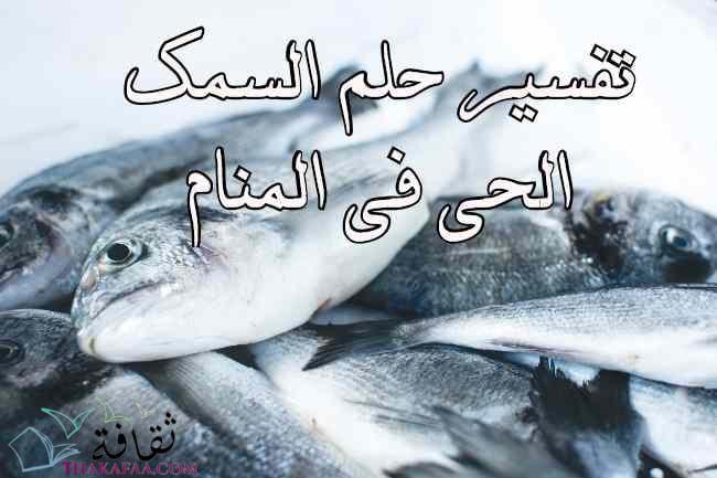 تفسير حلم السمك الحي في المنام