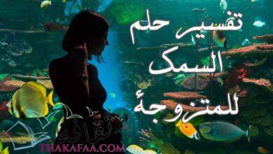 صورة تفسير حلم السمك للمتزوجة لكبار المفسرين الإسلاميين