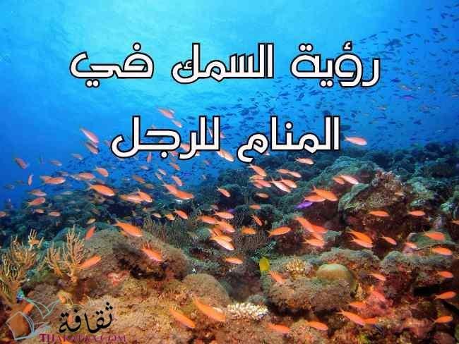 تفسير رؤية السمك في المنام للرجل