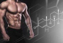 صورة ما هو هرمون التستوستيرون؟ أعراضه واسباب انخفاضه وزيادته وطرق علاجه