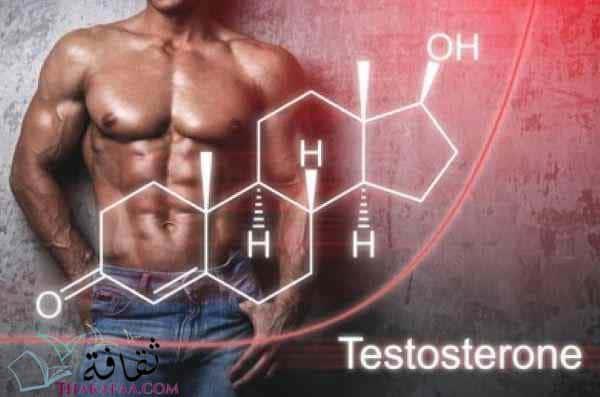 ما هو هرمون التستوستيرون؟