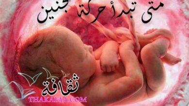 صورة متى تبدأ حركة الجنين وكيف تشعر الحامل بحركته