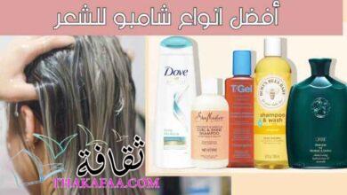 صورة أفضل انواع شامبو للشعر يصلح لجميع أنواع الشعر