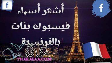 صورة أشهر أسماء فيسبوك بنات بالفرنسية ومعانيها مزخرفة يقبلها الفيس بوك